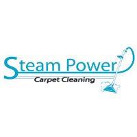 Steam Power Carpet Cleaning